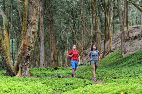 image of hiking couple tourists walking on trail path